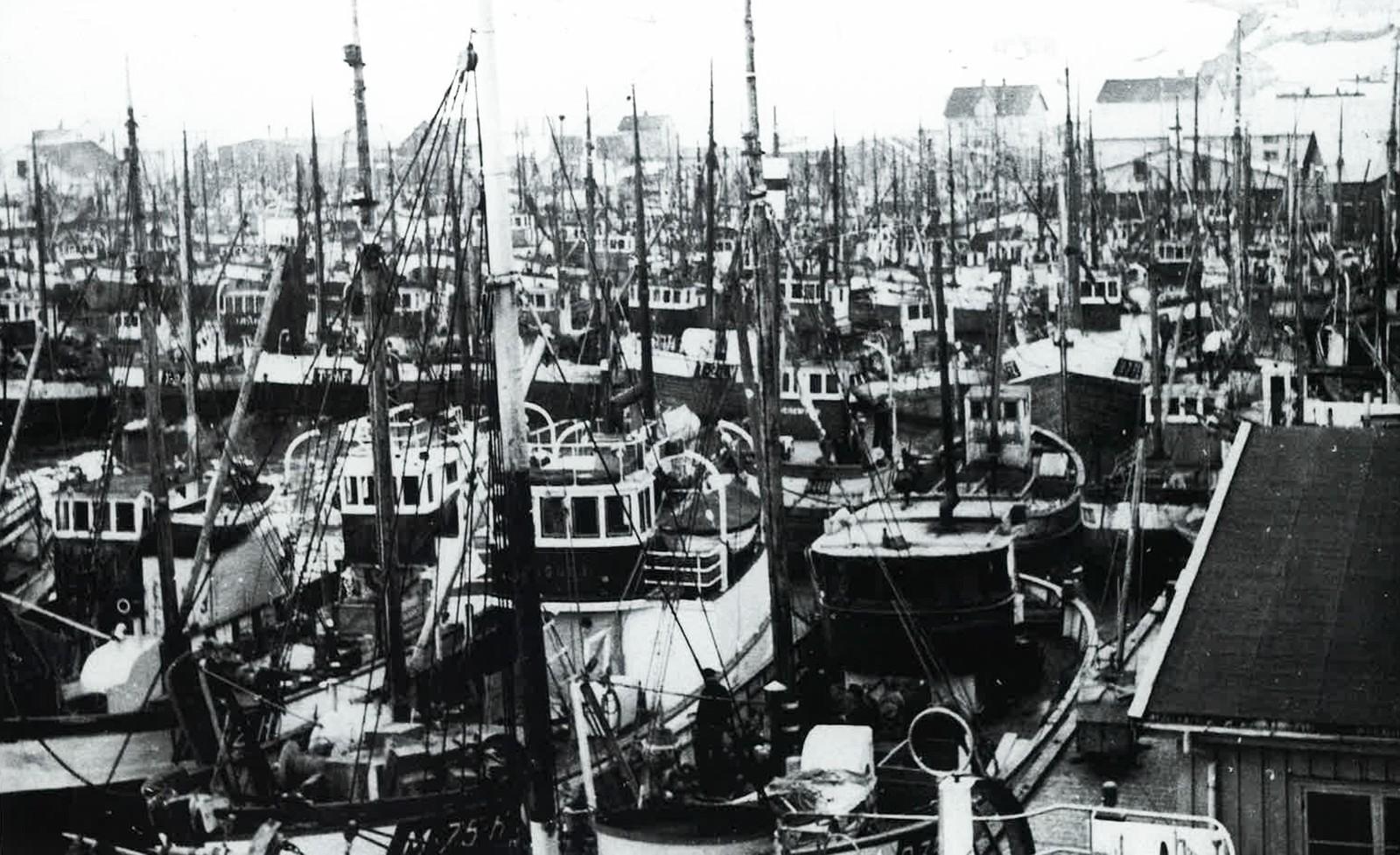 Landligge i Båtsfjord havn på midten av 50-tallet.
