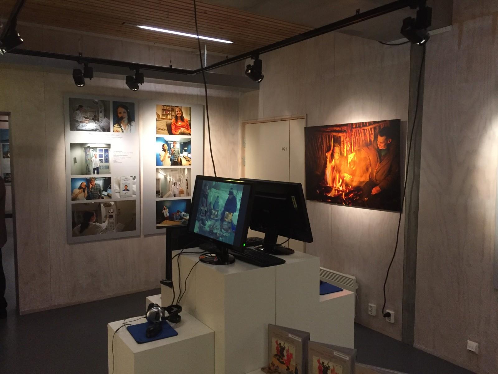 Kunstneren Jorunn Eikjok hadde mange verk å stille ut på samenes nasjonaldag.