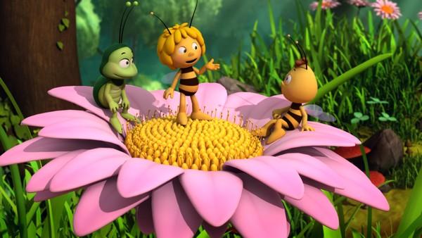 Tysk animasjonsserie. Maja opplever rare og vakre ting i naturen der hun summer rundt med sin smittsomme entusiasme.