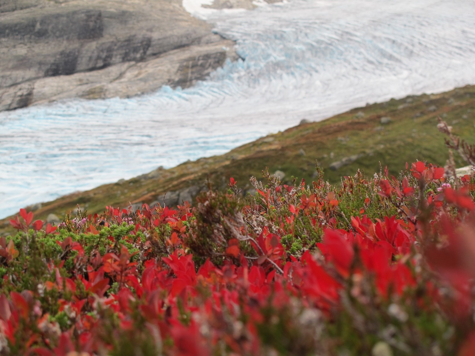 Haustfargar framfor Fåbergstølsbreen.