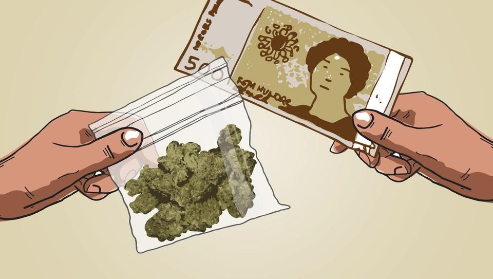 Fire nyanser cannabis