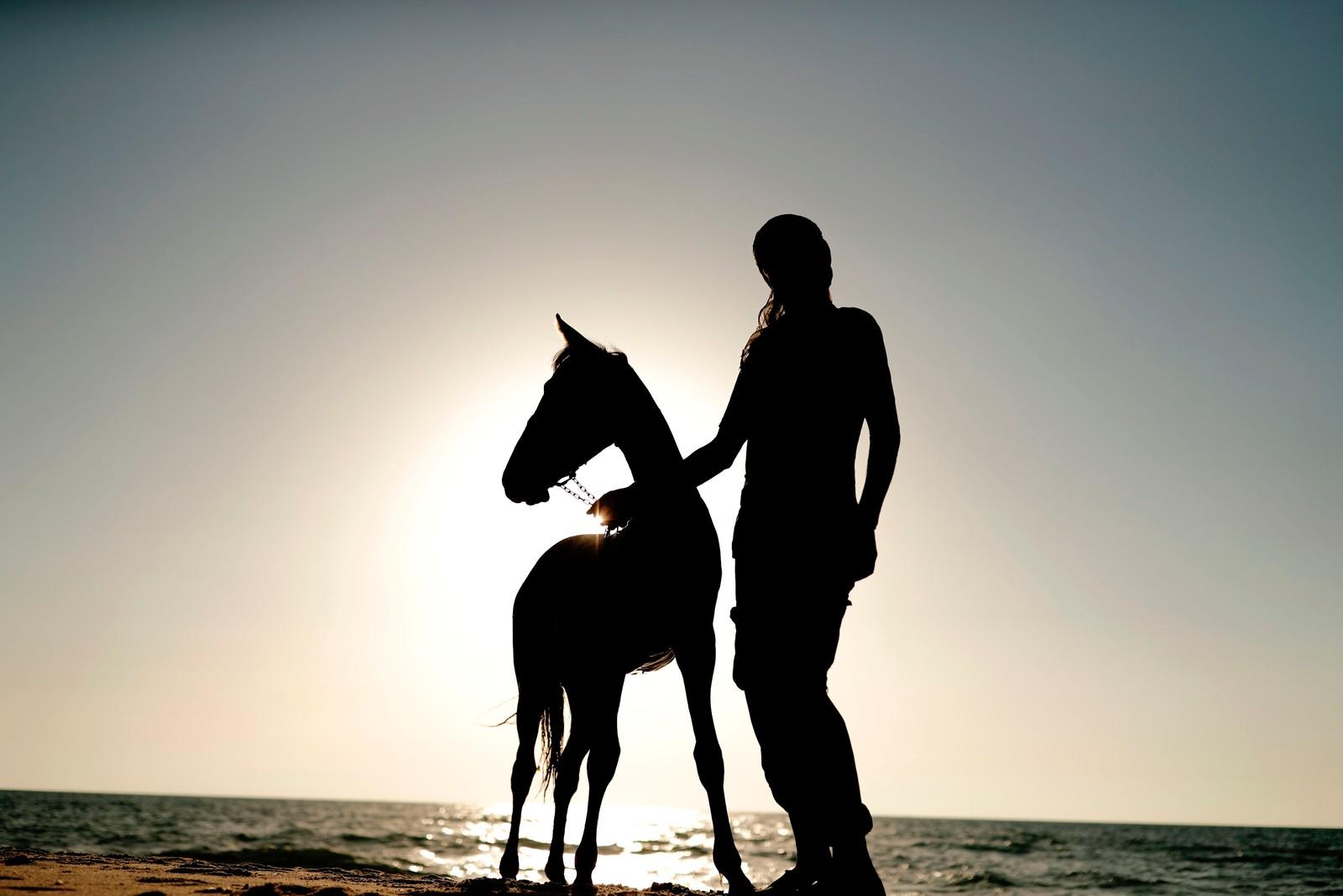 En palestinsk mann og hans hest tar et bad i varmen i Gaza.