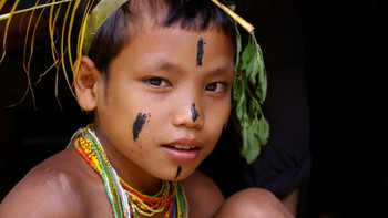 Mentawai-gutt