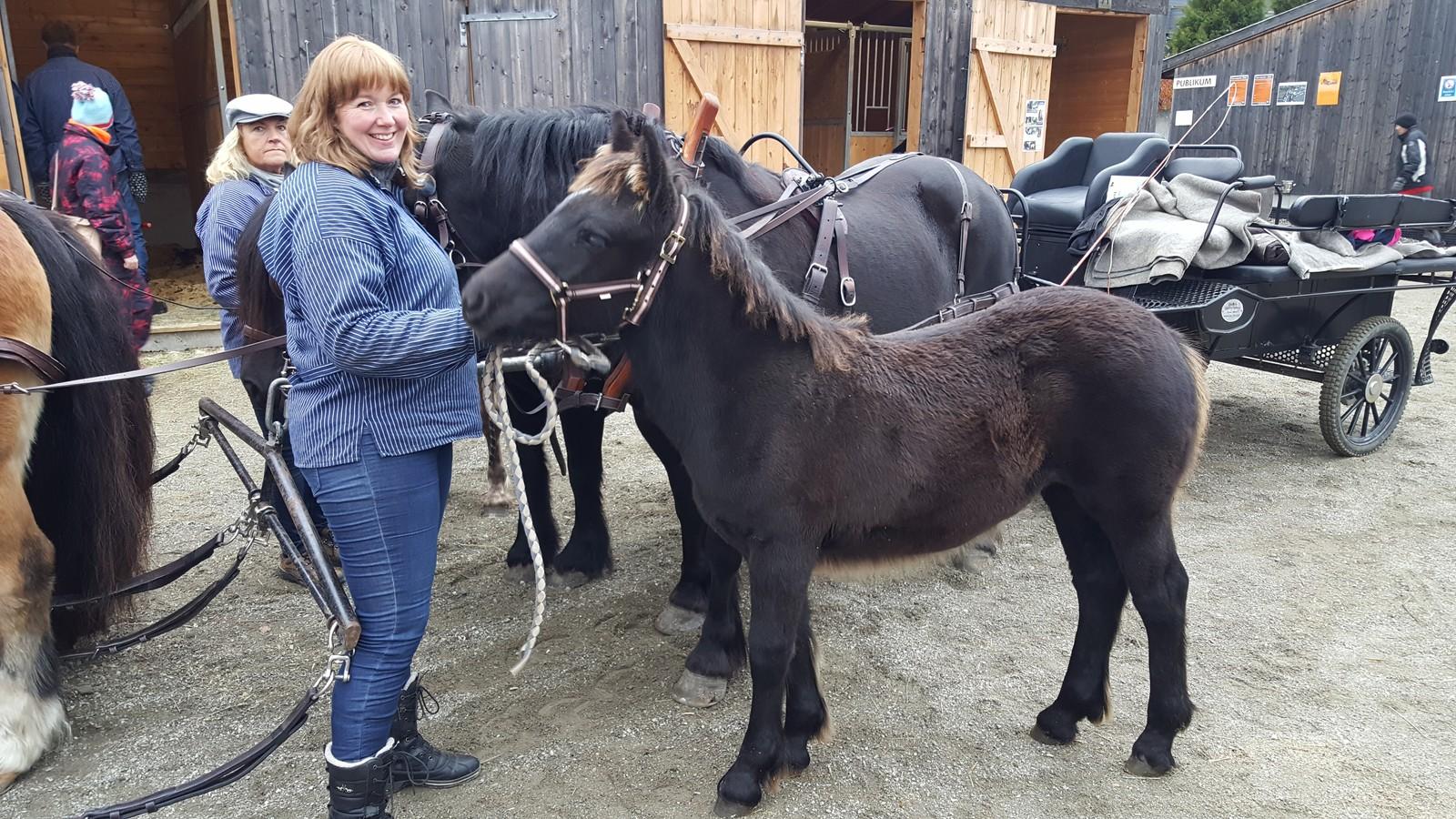 SMÅ OG STORE: Både små og store hester er med på Stavsmartn.