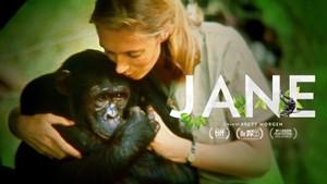 Jane - i apenes rike