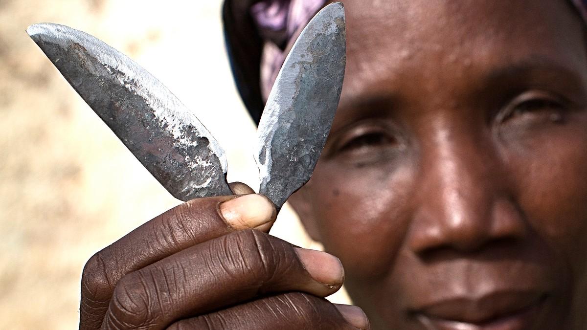 kvinnelig kjnnsorgan bilder kterske jenter