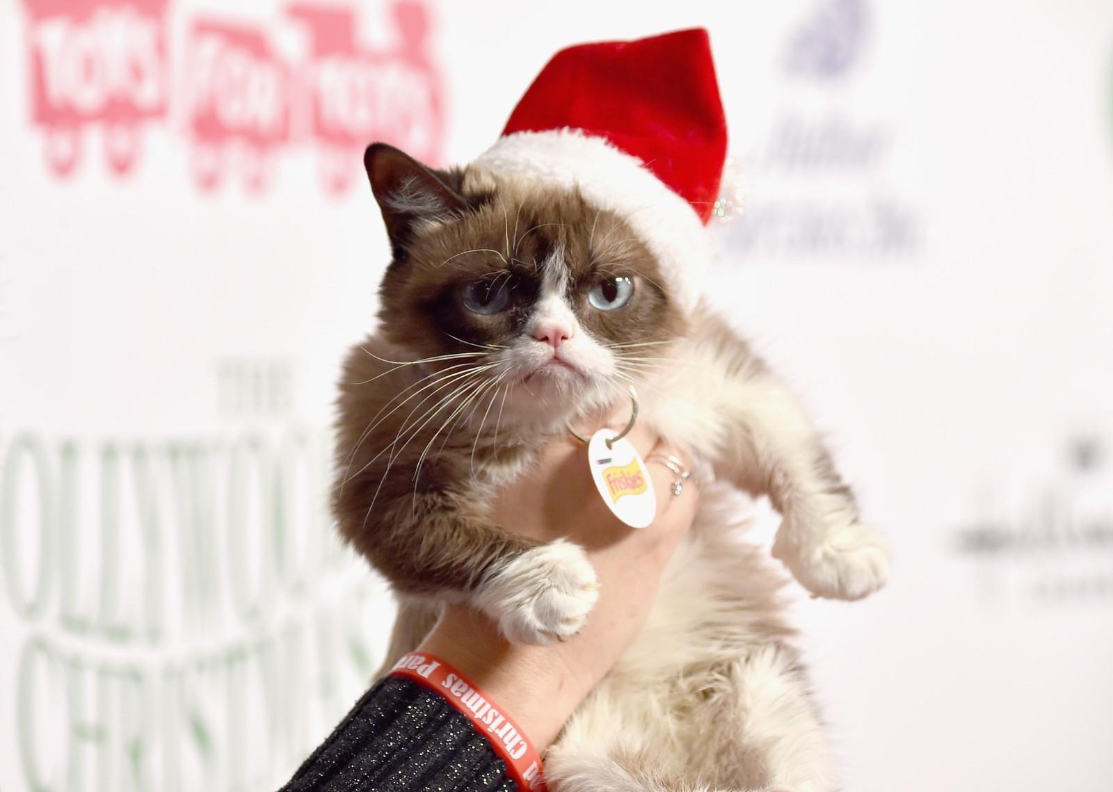 Nettkjendisen Grumpy Cat stilte opp for fotografene under den årlige juleparaden i Hollywood denne uka.
