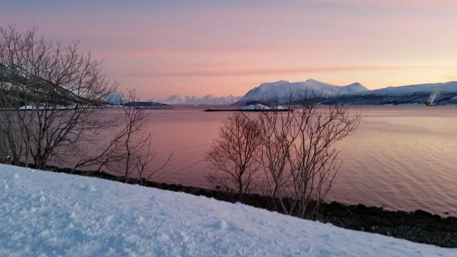 Reinøya