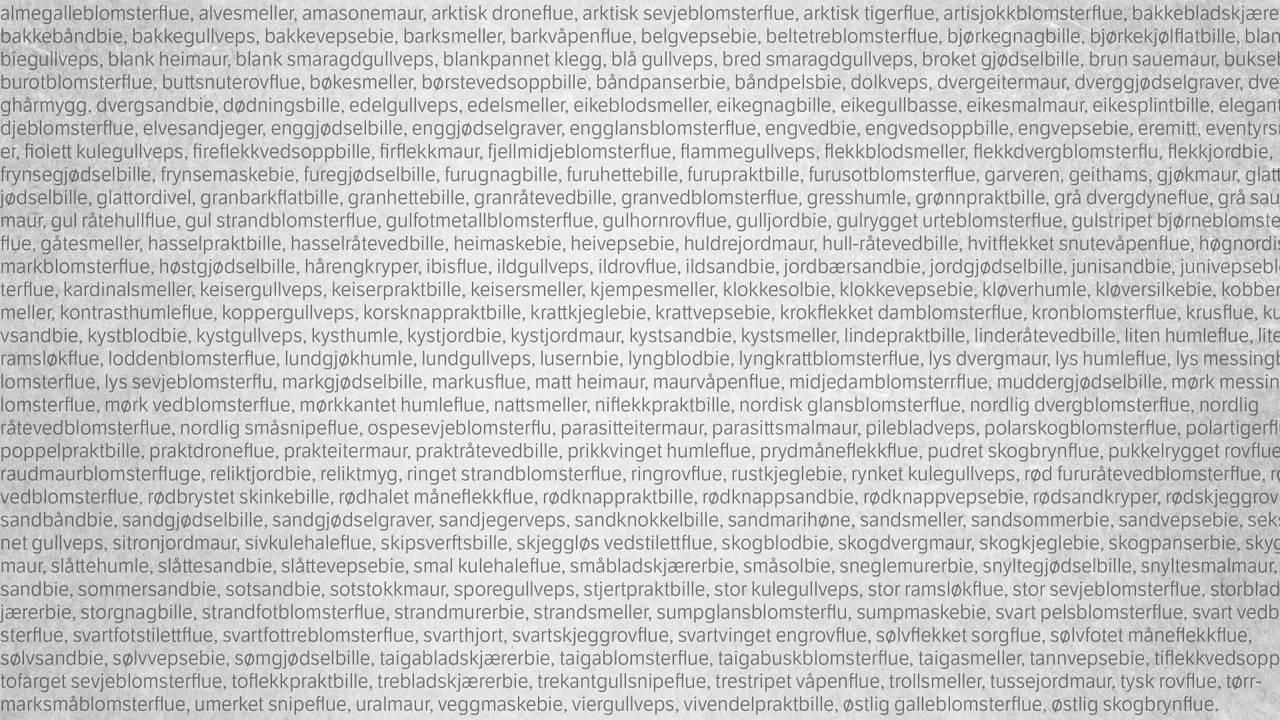 En flom av tekst som viser noen av de truede insektartene som er på Artsdatabanken sin rødliste. Lista er lang, selv om dette bare er noen få av de.
