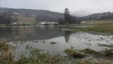 Flaum i Kjølsdalen - Foto: Harald Kolseth/NRK