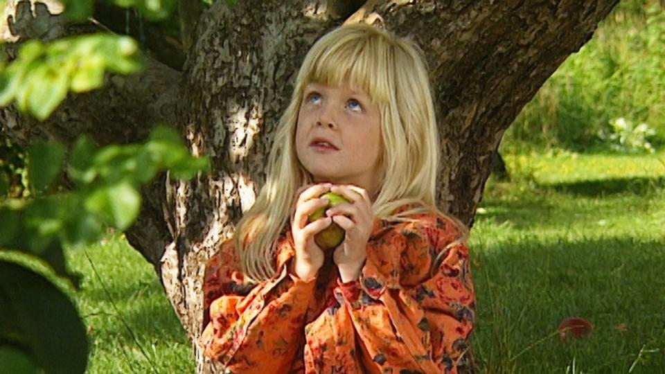 Epler, gips og kjærlighet