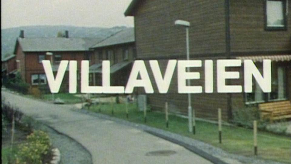Vill - villere - Villaveien
