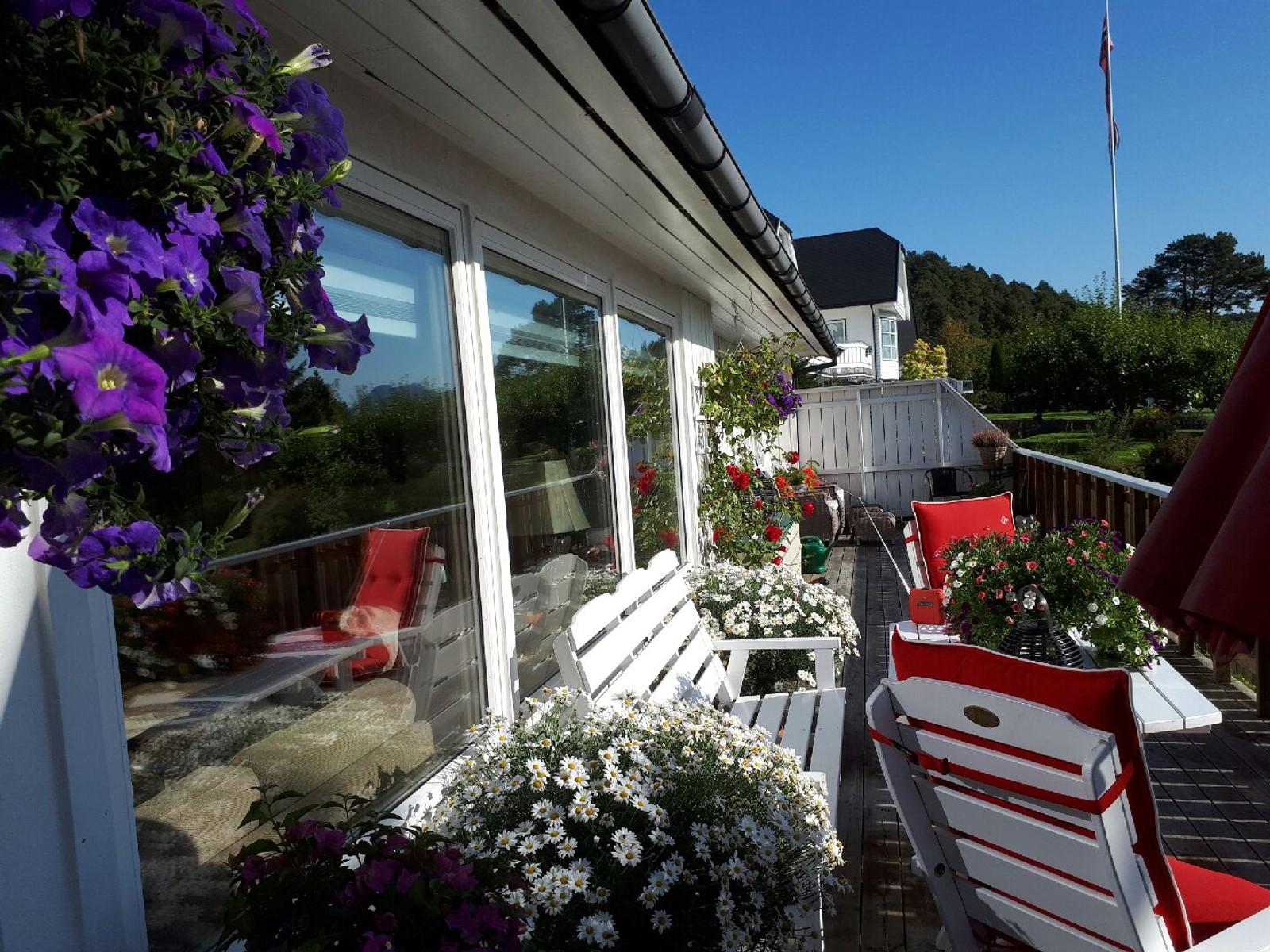 Sommaren nektar å sleppe taket på Blindheim i Ålesund.