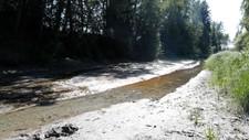 LITE VATN: Den nedbørsfattige sommaren har ført til nesten tørre elvar.