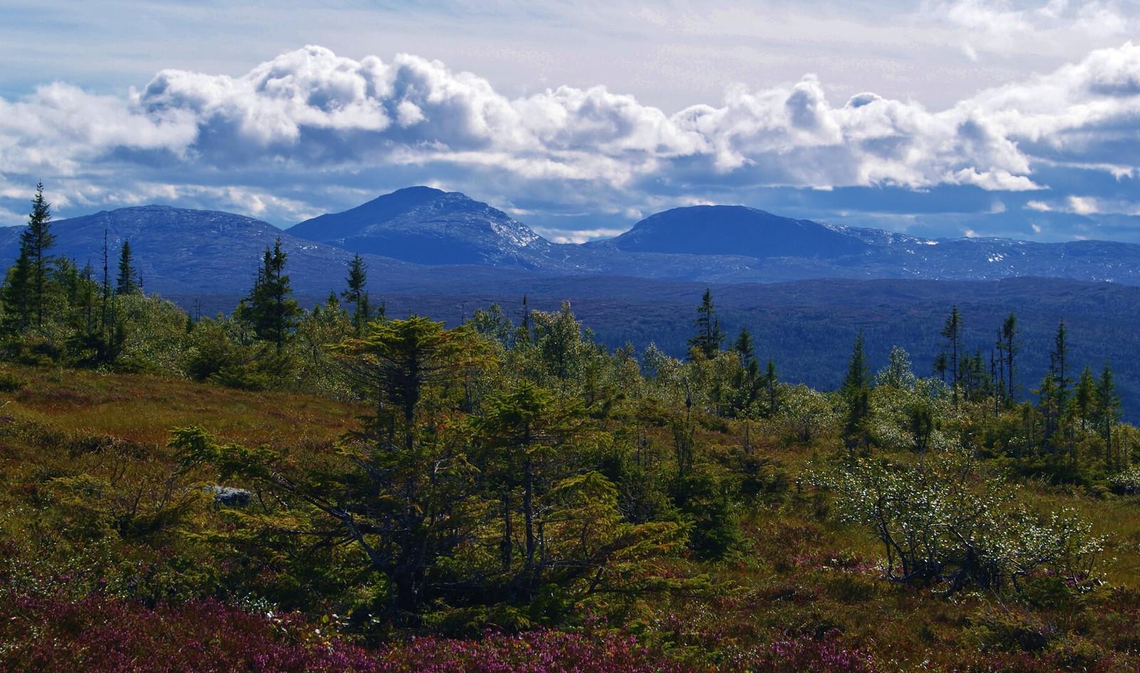 Kjølhaugan i Meråker sett fra Kvernsjøhøgda i Verdal