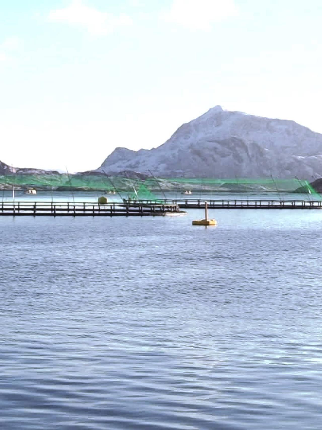 Kvarøy Fiskeoppdrett