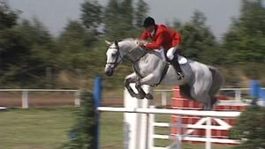 Hest - en livsstil