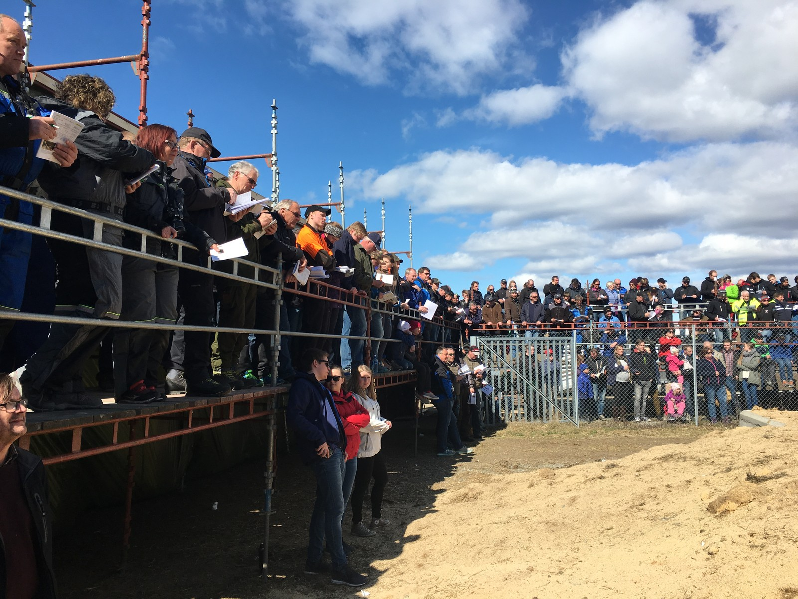 Rett i underkant av 800 møtte opp for å få med seg årets okseauksjon på Staur gård i Stange.