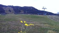 GRØNN JUL? Fortsetter klimaendringene som i dag alpinanlegg uten snø bli et mer og mer vanlig syn i Norge rundt juletider.