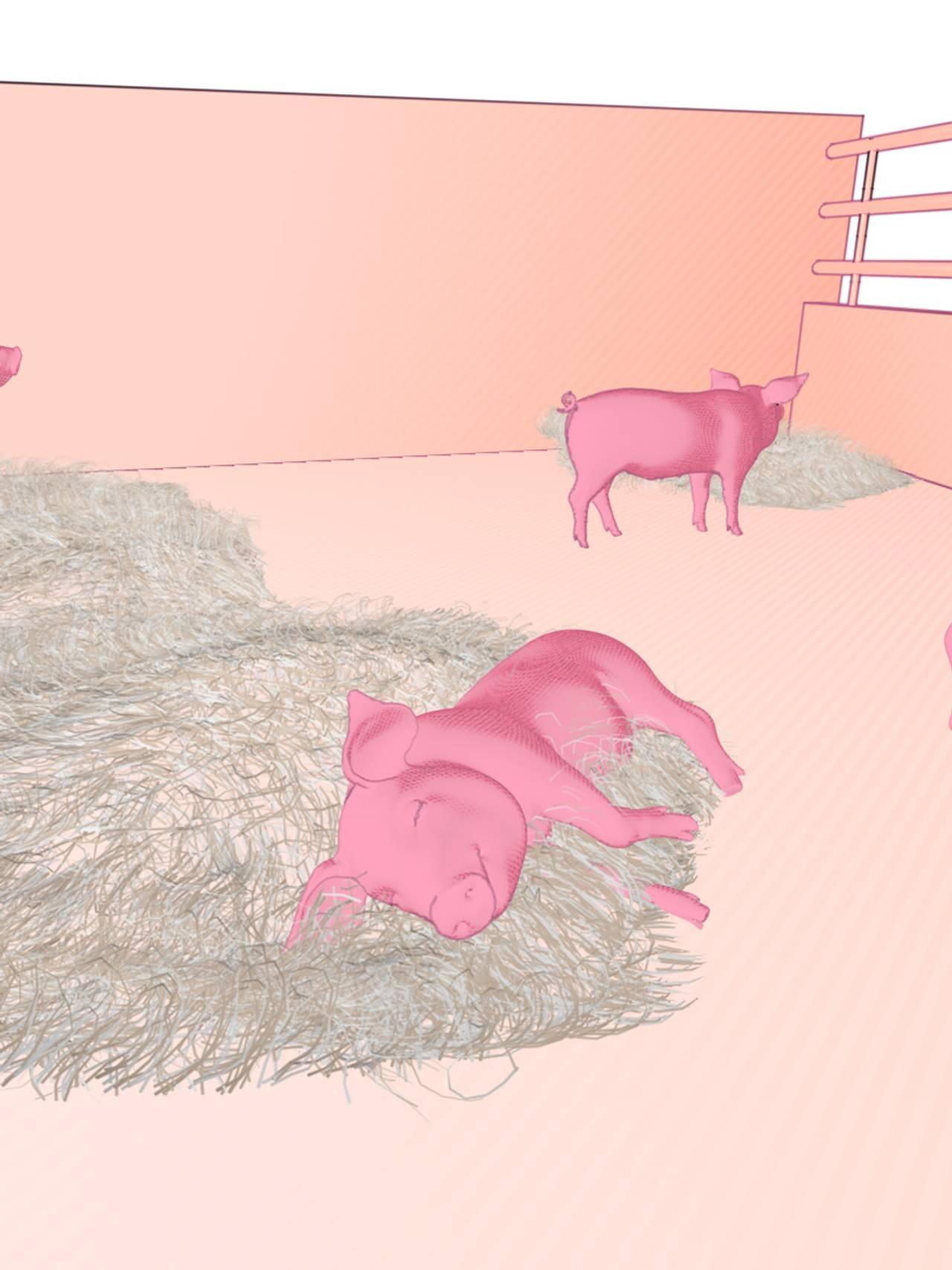 Liggende gris