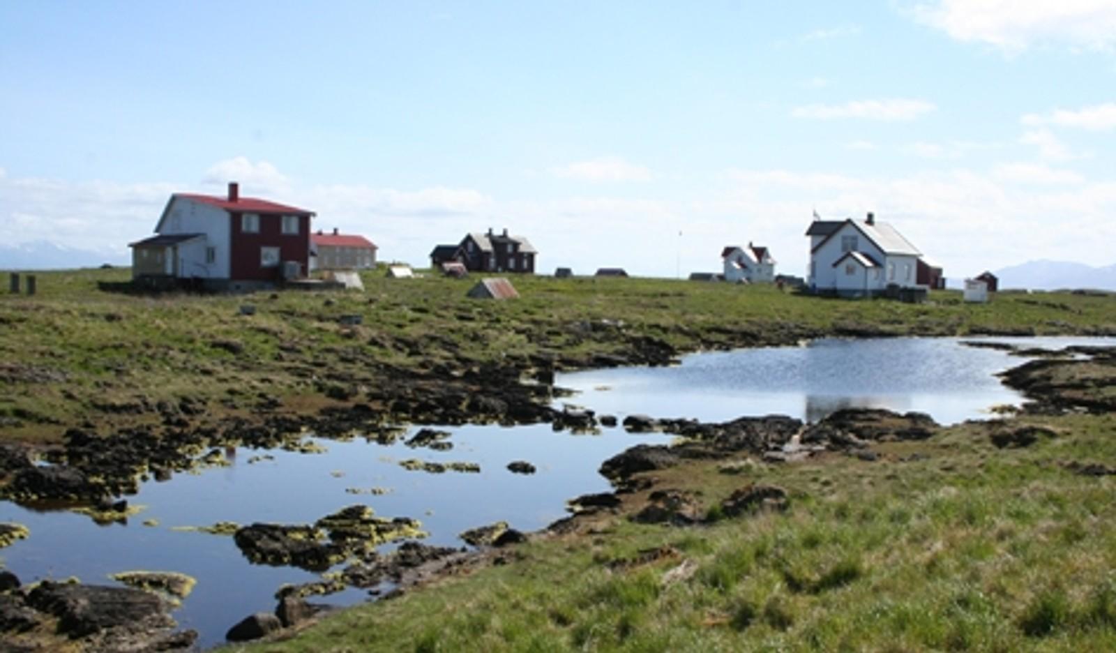 VEGAØYAN: ligger på Helgelandskysten i Nordland. Området er 1037 kvadratkilometer stort og omfatter øyer, holmer, skjær og sjø. Det består av femten øyvær, hvorav totalt 59 av øyene har vært bebodd.
