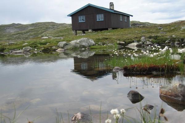 Slettningsbu -  Foto: Camilla Horten
