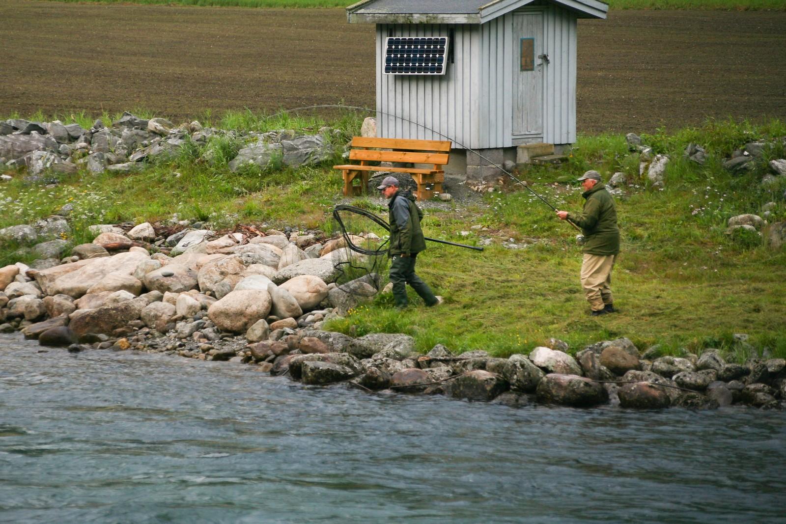 Kleppar Torkjell Grimelid reagerar kjapt og iler til elvebreidda med hoven som skal løfte opp den kongelege fangsten.
