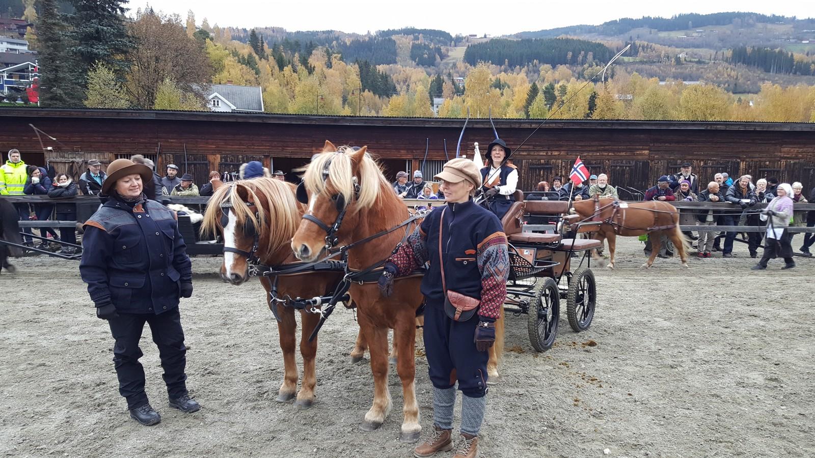 MANGE TILSKUERE. Mange hadde møtt opp for å se på opptoget med hester.