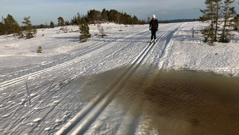 Det er varierende forhold i skiløypene mot slutten av sesongen. Her fra bymarka i Trondheim.