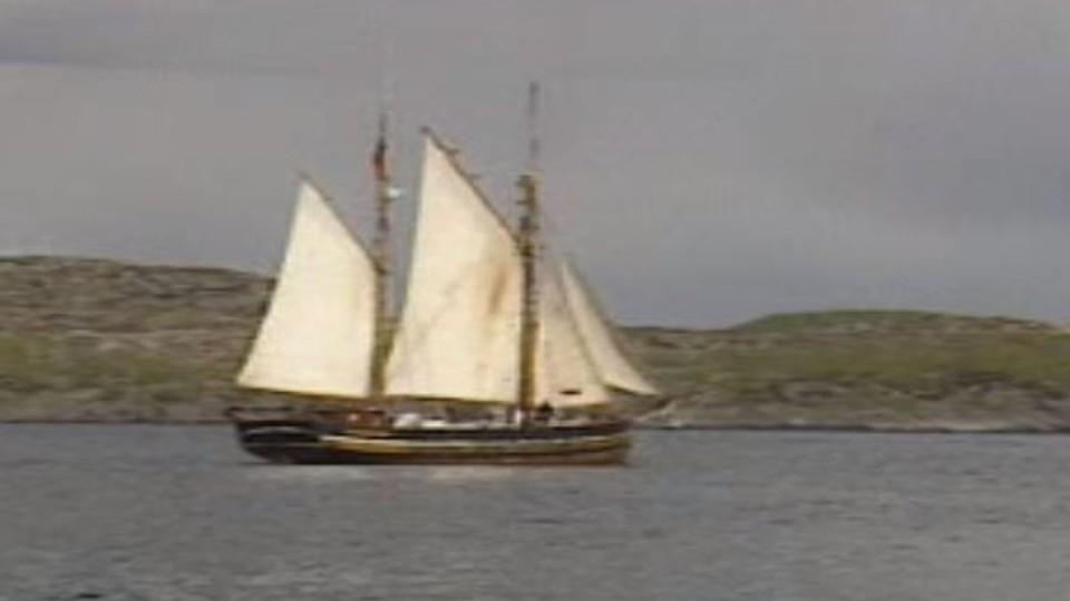 Den hermetiserte piraten