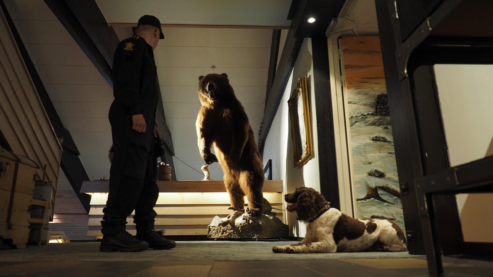 Politiets hunder sjekker Rondablikk før kongeparets ankomst.