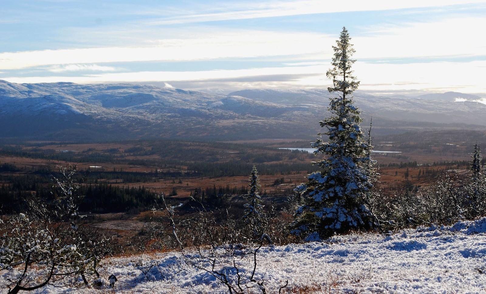 Den første snøen, Forramyran mot Klenningen