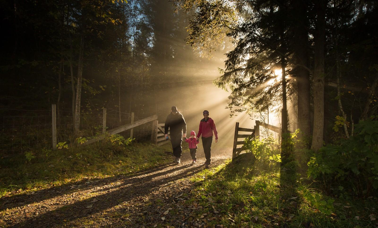 Oktober: På tur i Malvikmarka
