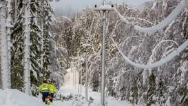 Tung, våt snø kan få trær til å falle over veier og kraftledninger. Meteorologisk institutt vil komme med et nytt OBS-varsel for Østlandet dersom de nye prognosene viser mellom 10 og 30 centimeters snøfall i morgen, lørdag.