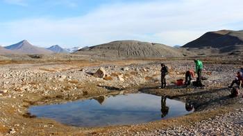 Forskere på Svalbard, NINA OG NIVA