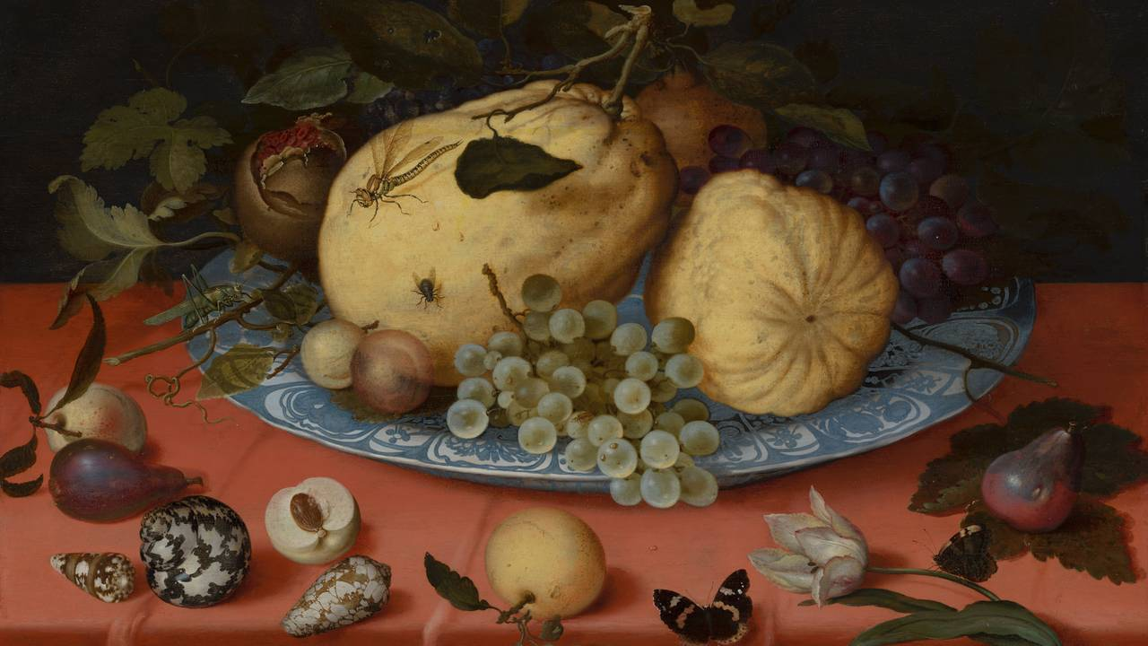 Fruit Still Life with Shells and Tulip