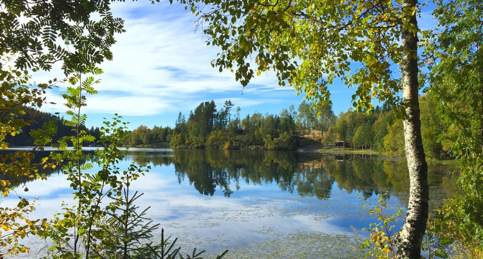 Varm høstdag i Estenstadmarka