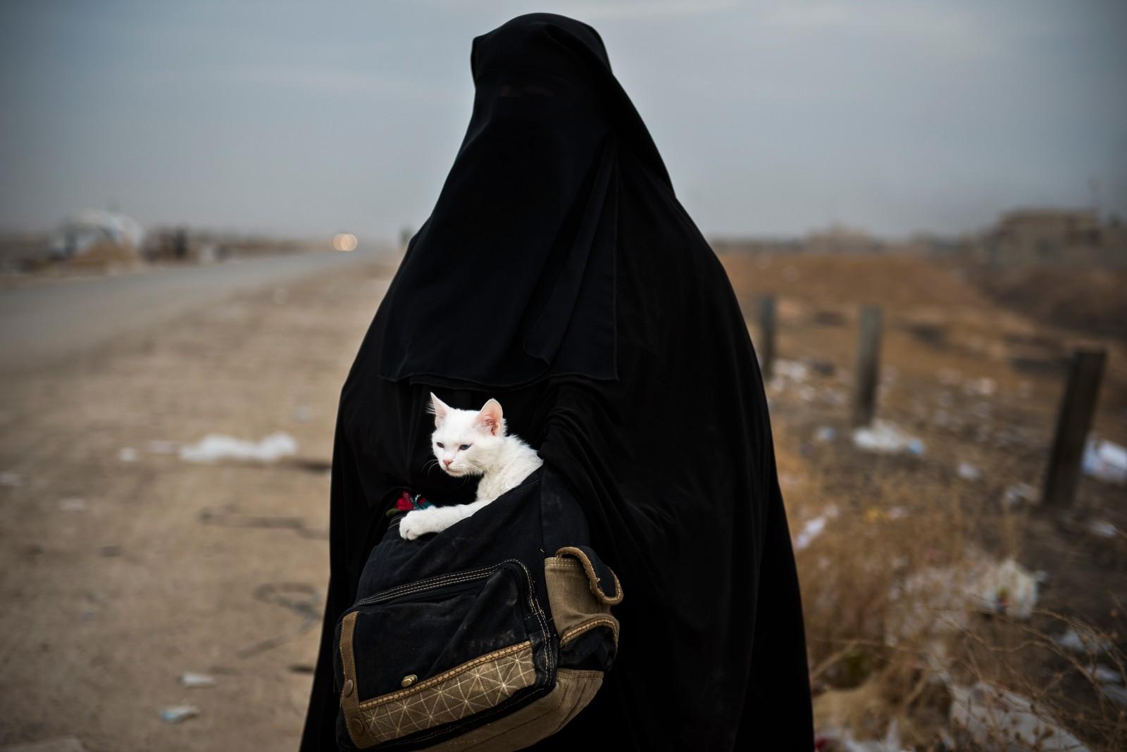 1. plass Åpen klasse: Odd Reidar Andersen, AFP.  Lulu: En kvinne og hennes katt Lulu (arabisk for perle) venter på transport til en flyktningeleir I Shaqouli i Nord-Irak, for å komme seg bort fra kampene mellom IS og irakiske styrker i Mosul.