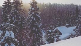MYE SNØ; Oslomarka en tidlig morgen i februar. Et lett snødryss faller på et allerede tykt snølag.