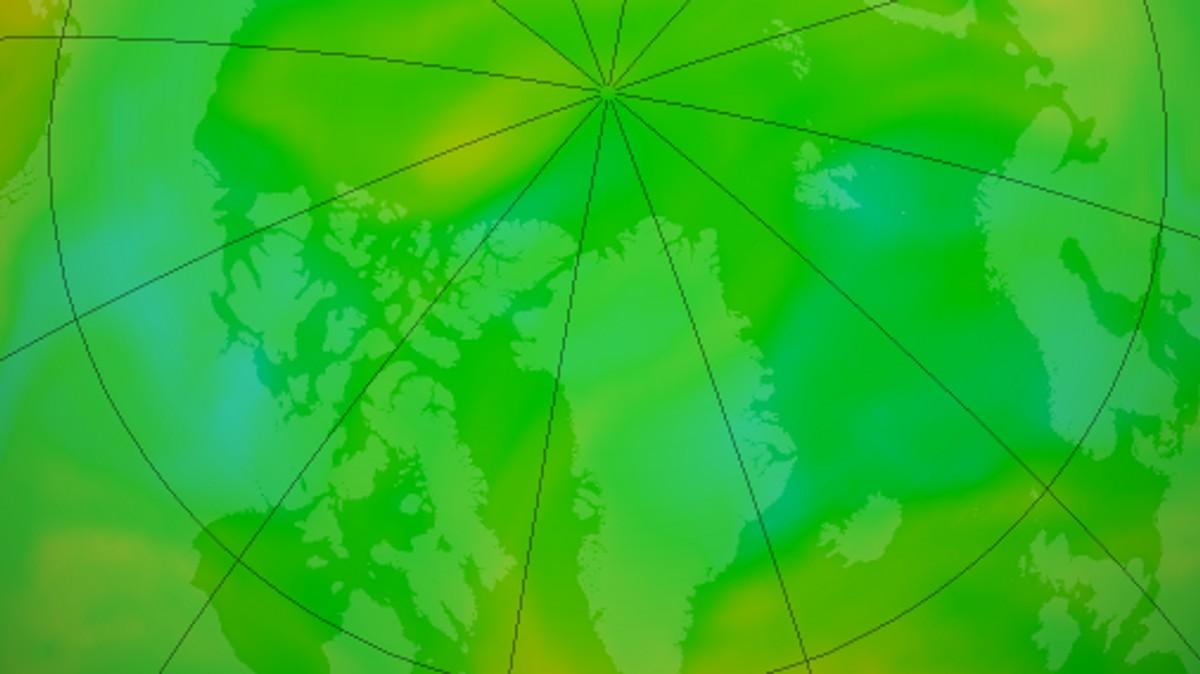 Slik er ozonlaget over den nordlege halvkula no i juni 2020. Illustrasjon frå NASA si ozonovervaking.