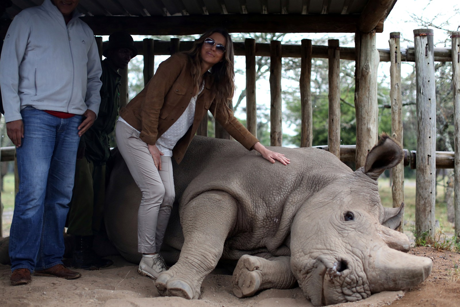 Den britiske skuespilleren og modellen Elizabeth Hurley klapper et nordlig hvitt neshorn (Ceratotherium simum cottoni) i Ol Pejeta-reservatet i Kenya i forkant av et møte mellom afrikanske ledere for å bekjempe krypskyttere. Det finnes i dag kun tre neshorn av dette slaget igjen i verden.