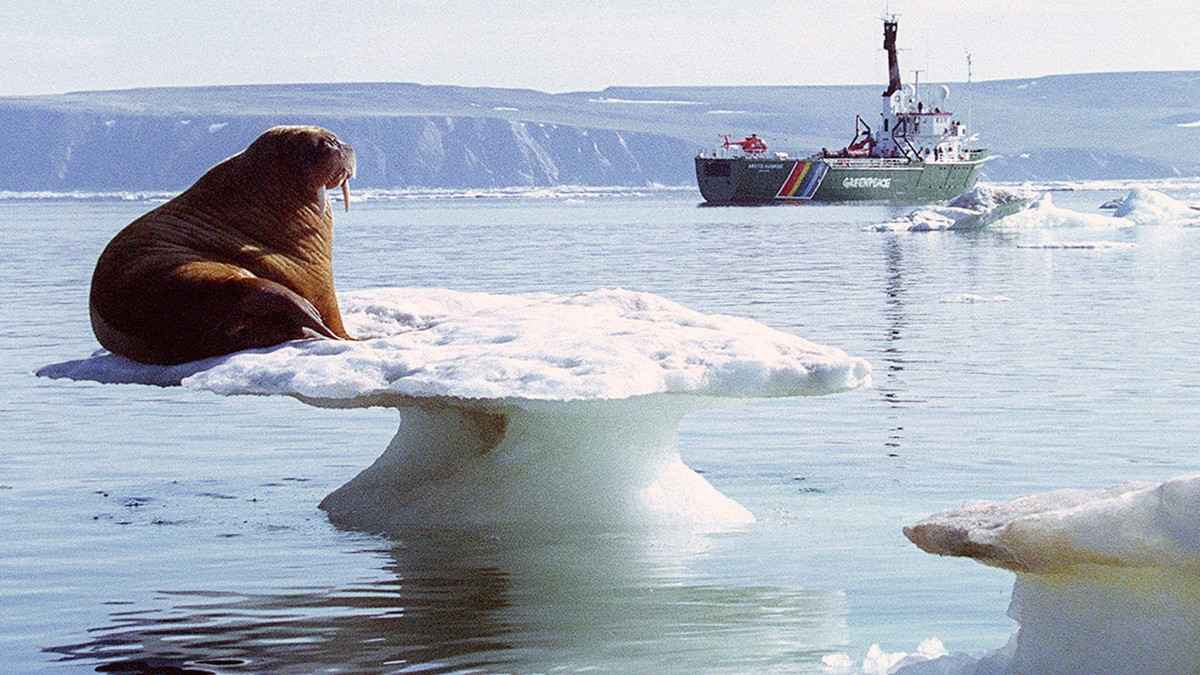 Tsjuktsjerhavet i Alaska - Foto: Greenpeace/Scanpix/Reuters