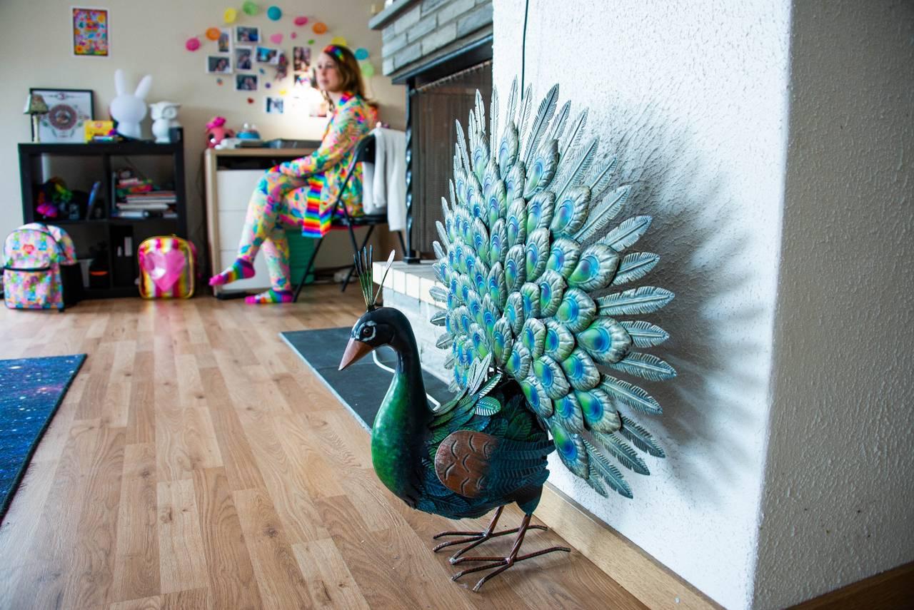 Påfugl i leiligheten til Hanne Breivik