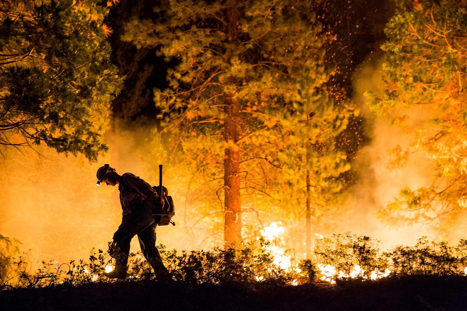 En brannmann passerer en brann i nasjonalparken Sequoia National Forest i California. Over 2.500 mennesker ble evakuert på grunn av brannene som har herja området.