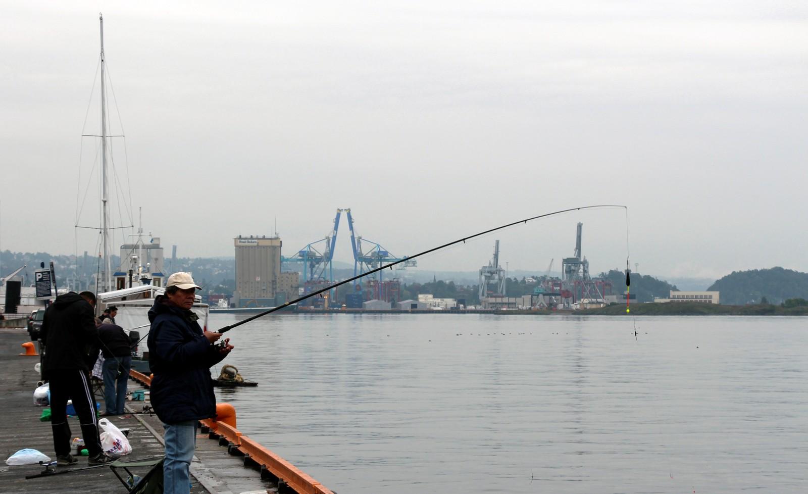 Fiskerne på Vippetangen få god utsikt mot kranene på Sjursøya
