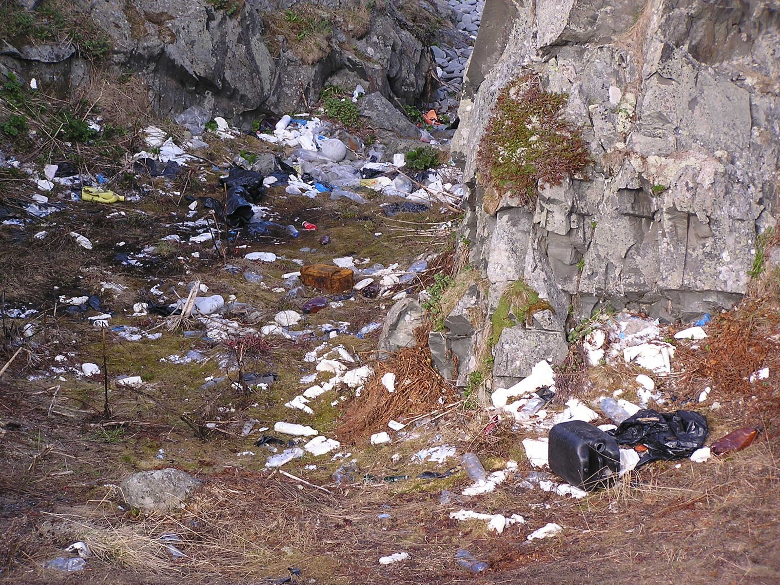 Før: Denne fjellsiden var full av søppel.