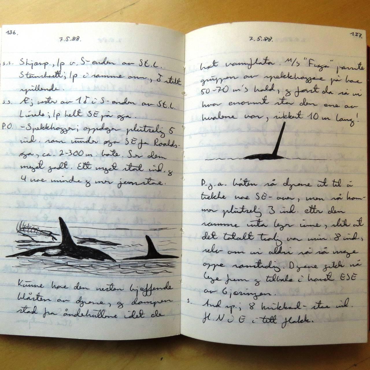 Tors dagbok, 1988.