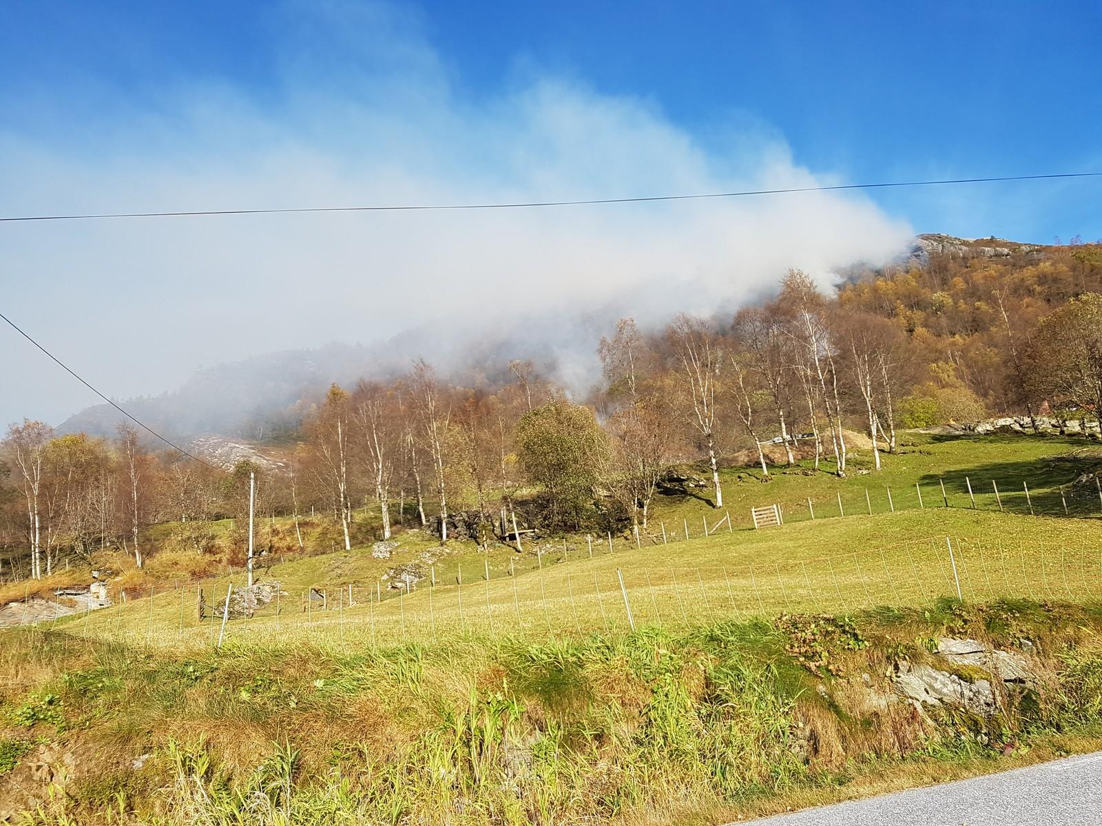 Brann i Nedre Lavikdal