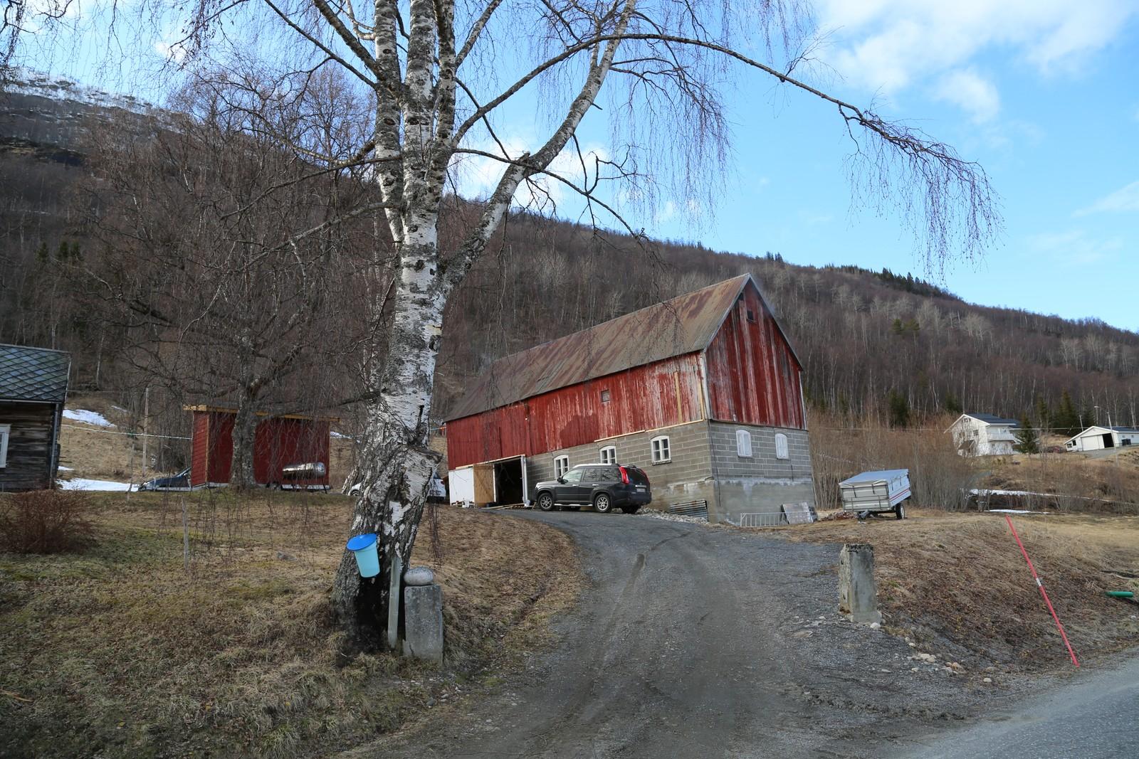 I låven på slektsgården i Saltdal foregår bjørkesirupproduksjonen.