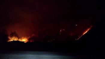 Brann oppover fjellsida